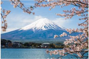 Il Giappone tra Order and harmony e Beautiful – di Pinuccia Parini